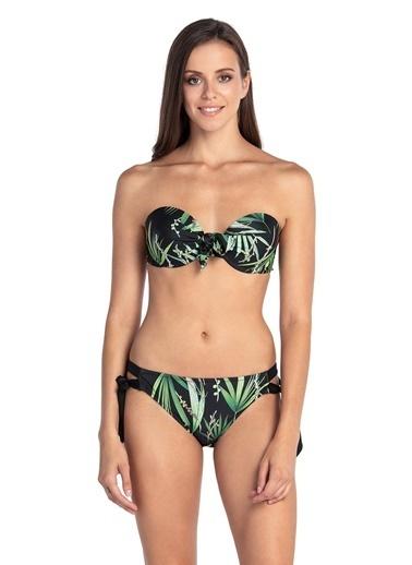 Dagi Kaplı Bikini Takım Siyah